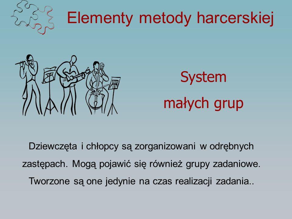 Elementy metody harcerskiej System małych grup Dziewczęta i chłopcy są zorganizowani w odrębnych zastępach. Mogą pojawić się również grupy zadaniowe.