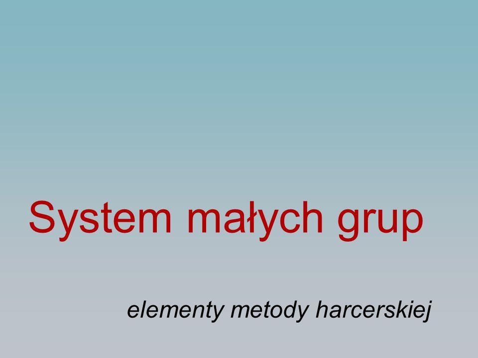 System małych grup elementy metody harcerskiej