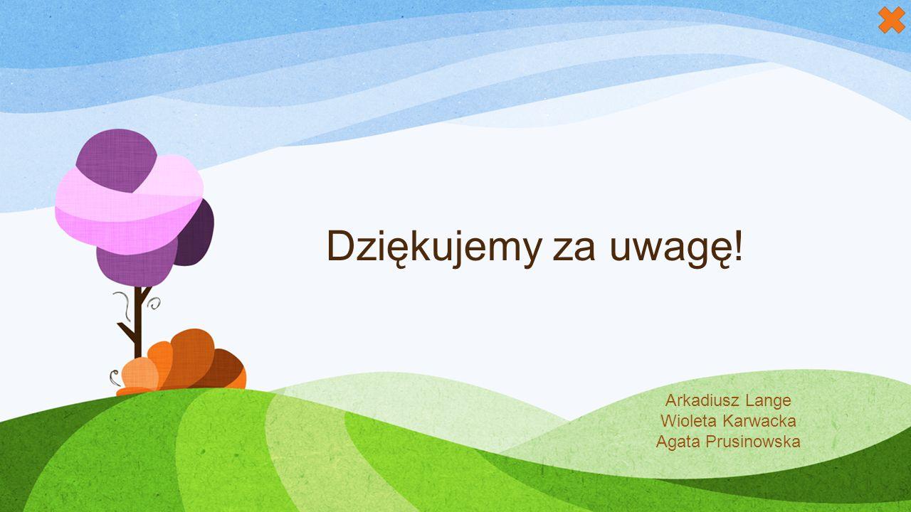 Dziękujemy za uwagę! Arkadiusz Lange Wioleta Karwacka Agata Prusinowska