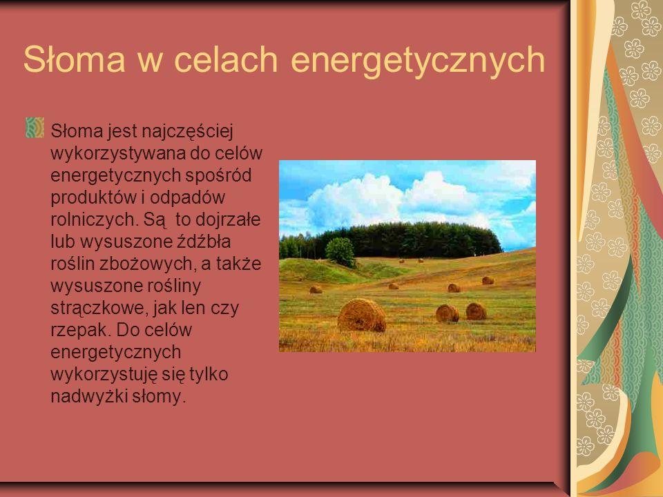 Słoma w celach energetycznych Słoma jest najczęściej wykorzystywana do celów energetycznych spośród produktów i odpadów rolniczych. Są to dojrzałe lub