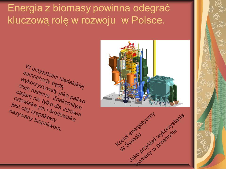 Energia z biomasy powinna odegrać kluczową rolę w rozwoju w Polsce. Kocioł energetyczny W Świeciu Jako przykład wykorzystania biomasy w przemyśle W pr