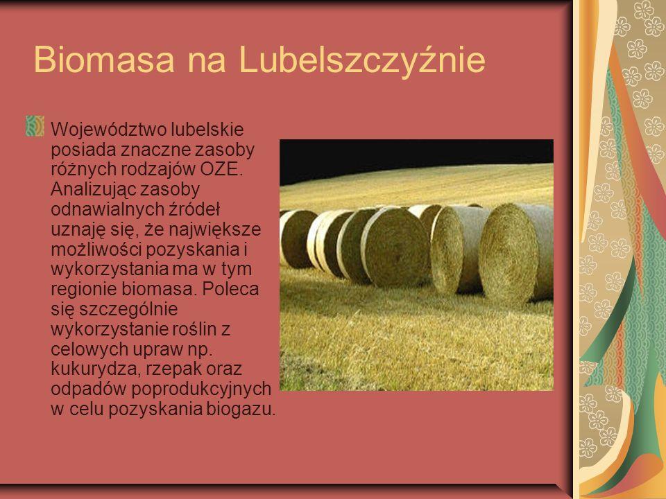 Biomasa na Lubelszczyźnie Województwo lubelskie posiada znaczne zasoby różnych rodzajów OZE. Analizując zasoby odnawialnych źródeł uznaję się, że najw