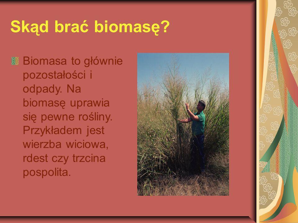 Skąd brać biomasę. Biomasa to głównie pozostałości i odpady.
