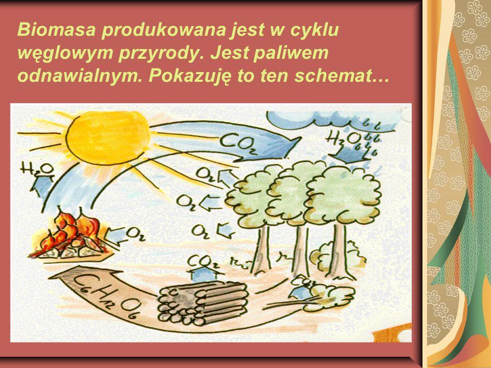 Biomasa produkowana jest w cyklu węglowym przyrody. Jest paliwem odnawialnym. Pokazuję to ten schemat…