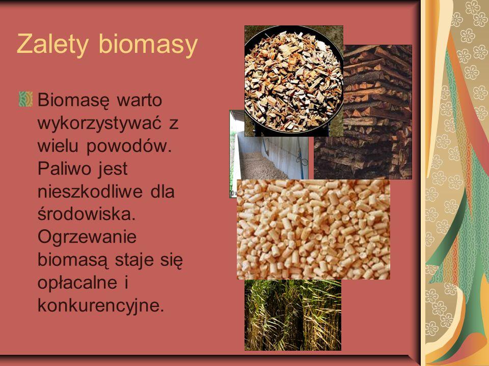 Zalety biomasy Biomasę warto wykorzystywać z wielu powodów. Paliwo jest nieszkodliwe dla środowiska. Ogrzewanie biomasą staje się opłacalne i konkuren