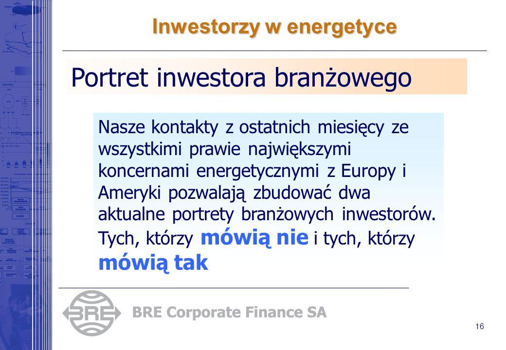 16 Inwestorzy w energetyce Portret inwestora branżowego Nasze kontakty z ostatnich miesięcy ze wszystkimi prawie największymi koncernami energetycznymi z Europy i Ameryki pozwalają zbudować dwa aktualne portrety branżowych inwestorów.