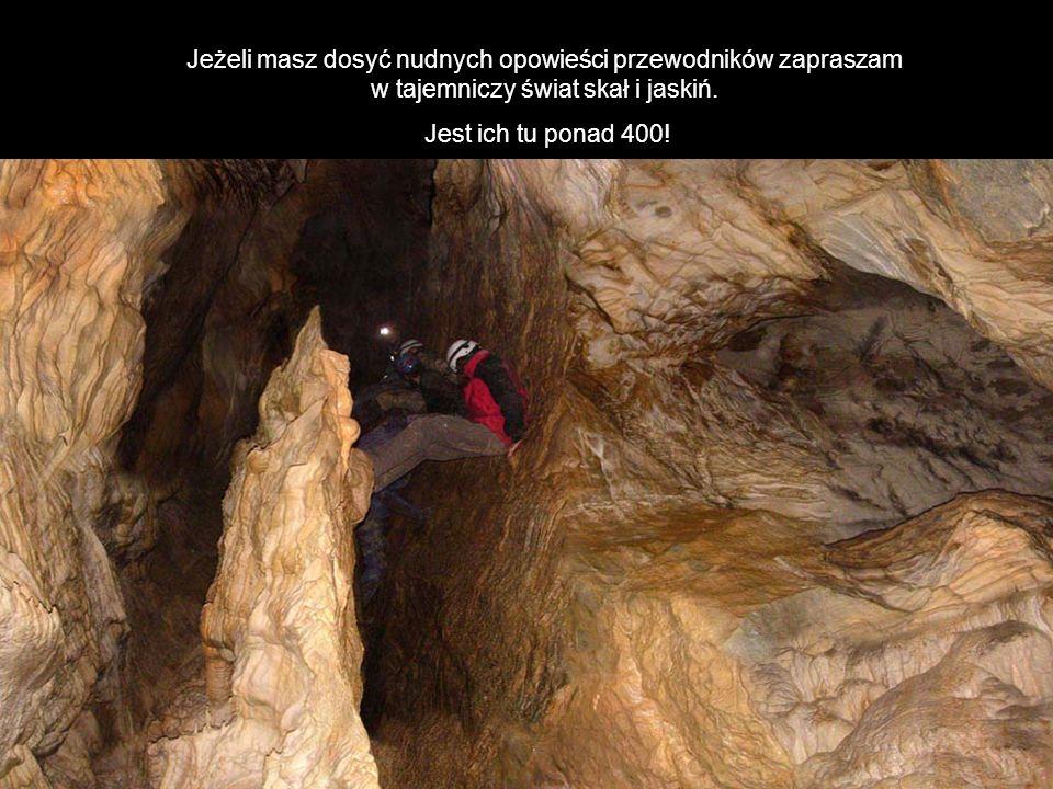 Jeżeli masz dosyć nudnych opowieści przewodników zapraszam w tajemniczy świat skał i jaskiń.