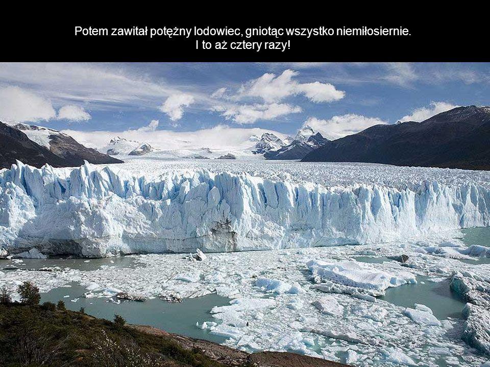 Potem zawitał potężny lodowiec, gniotąc wszystko niemiłosiernie. I to aż cztery razy!
