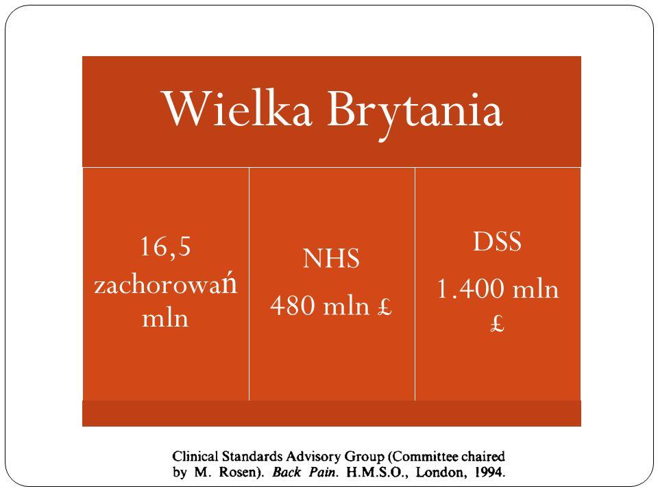 Wielka Brytania 16,5 zachorowa ń mln NHS 480 mln £ DSS 1.400 mln £