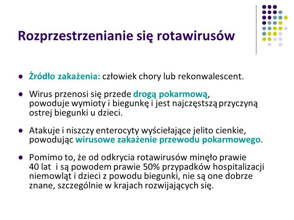Rozprzestrzenianie się rotawirusów Żródło zakażenia: człowiek chory lub rekonwalescent. Wirus przenosi się przede drogą pokarmową, powoduje wymioty i
