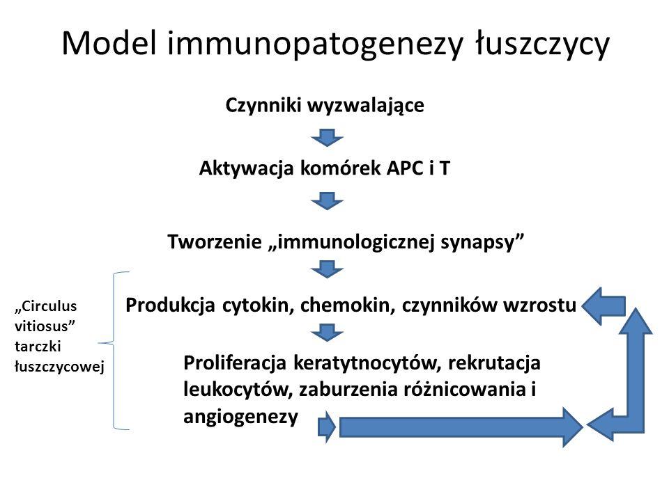 Model immunopatogenezy łuszczycy Czynniki wyzwalające Aktywacja komórek APC i T Tworzenie immunologicznej synapsy Produkcja cytokin, chemokin, czynnik