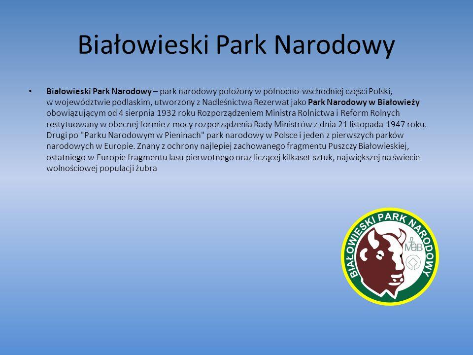 Białowieski Park Narodowy Białowieski Park Narodowy – park narodowy położony w północno-wschodniej części Polski, w województwie podlaskim, utworzony