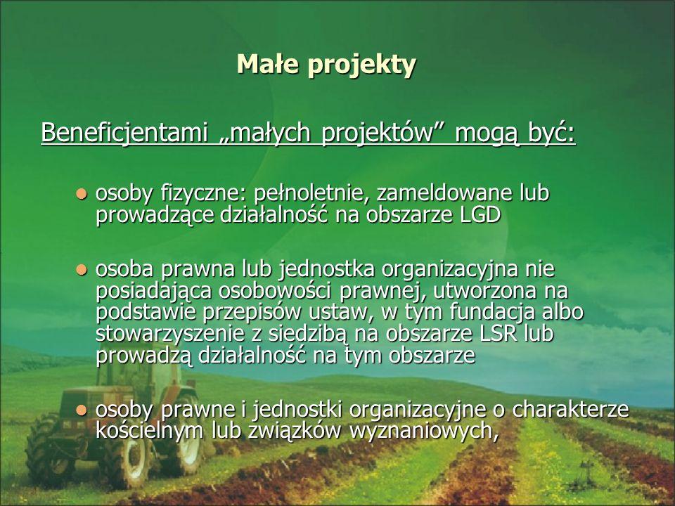 Małe projekty Beneficjentami małych projektów mogą być: osoby fizyczne: pełnoletnie, zameldowane lub prowadzące działalność na obszarze LGD osoby fizy