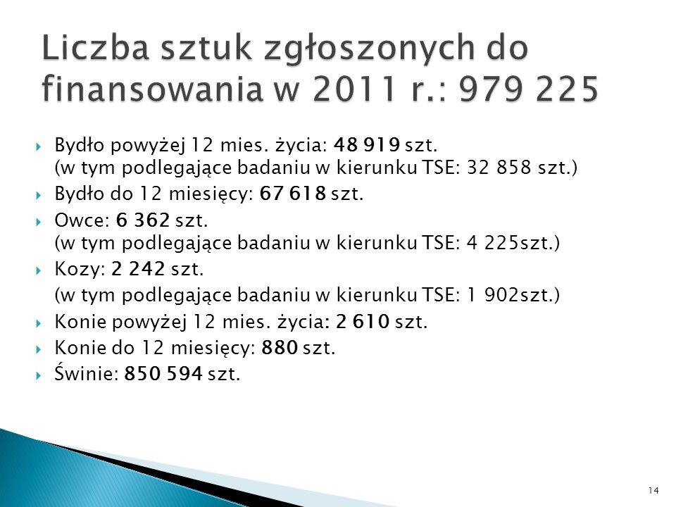 Bydło powyżej 12 mies. życia: 48 919 szt.
