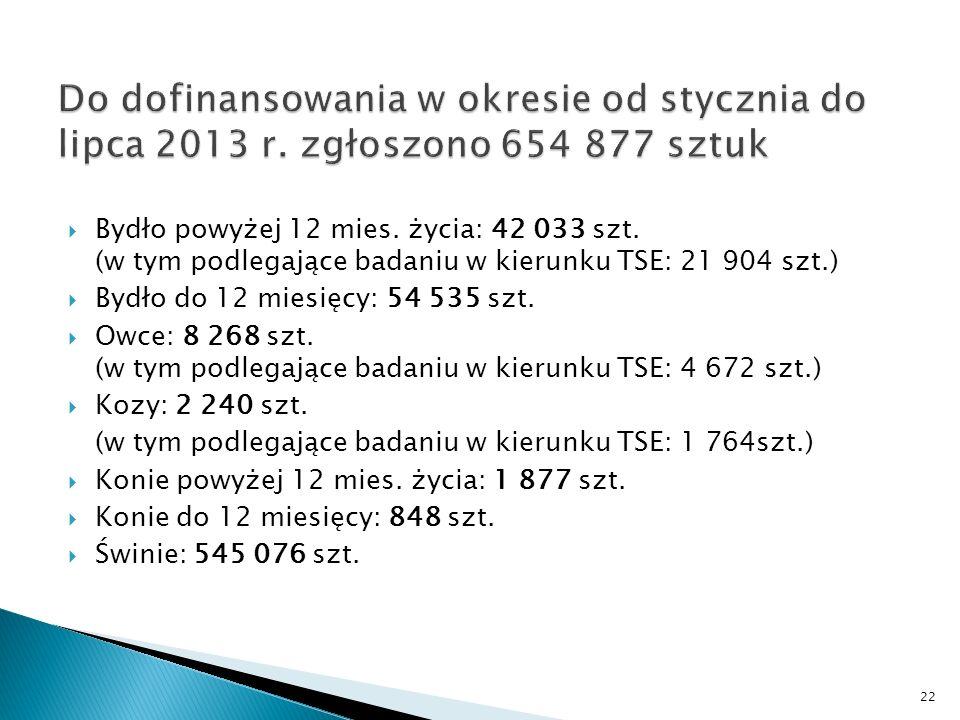 Bydło powyżej 12 mies. życia: 42 033 szt.