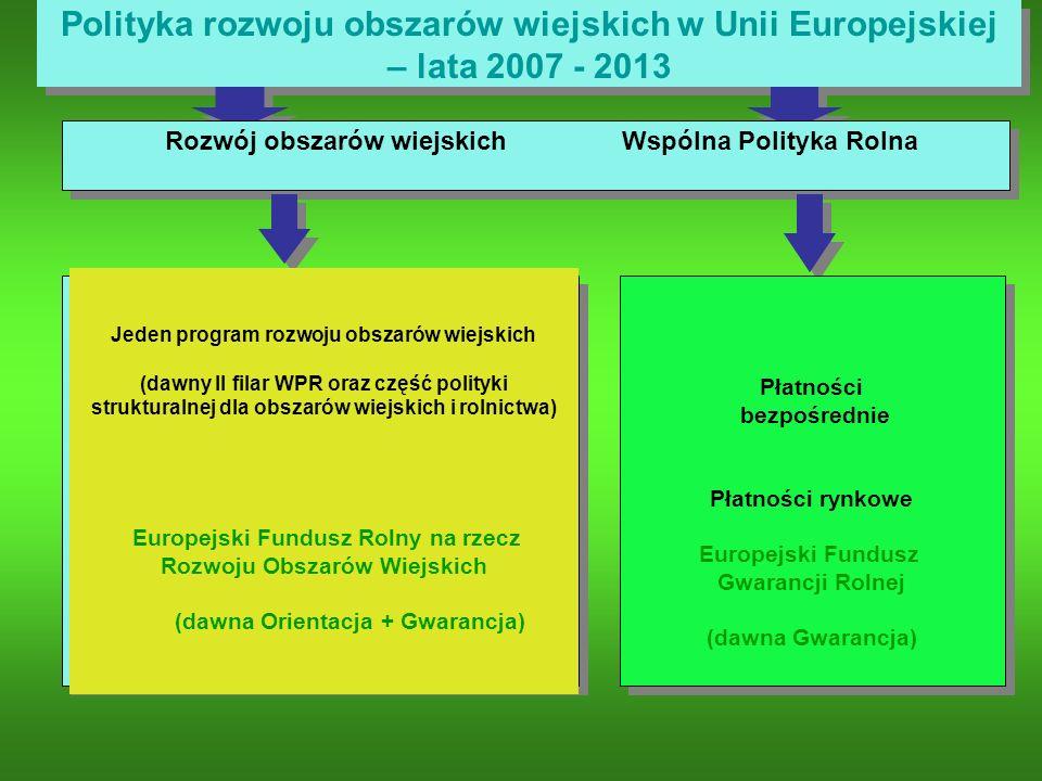 Polityka rozwoju obszarów wiejskich w Unii Europejskiej – lata 2007 - 2013 Płatności bezpośrednie Płatności rynkowe Europejski Fundusz Gwarancji Rolne
