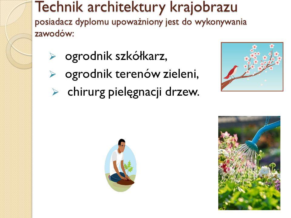 Technik architektury krajobrazu posiadacz dyplomu upoważniony jest do wykonywania zawodów: ogrodnik szkółkarz, ogrodnik terenów zieleni, chirurg pielęgnacji drzew.