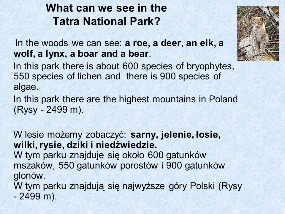 What can we see in the Tatra National Park.