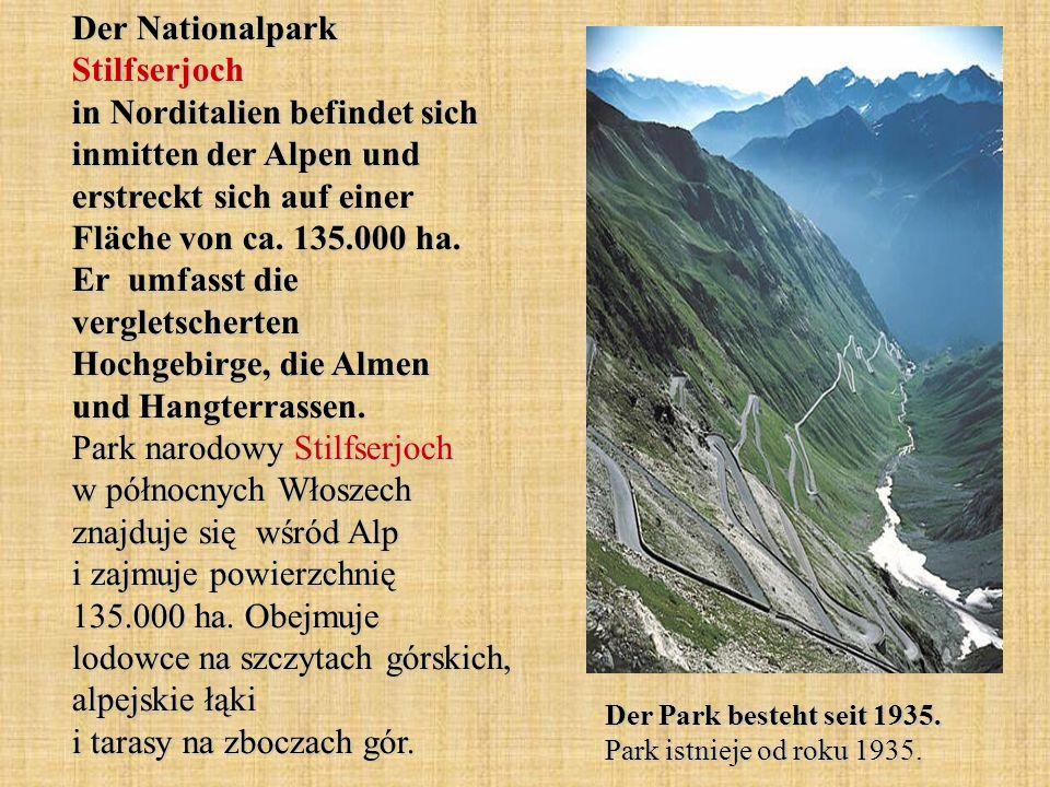 Der Nationalpark Stilfserjoch in Norditalien befindet sich inmitten der Alpen und erstreckt sich auf einer Fläche von ca. 135.000 ha. Er umfasst die v