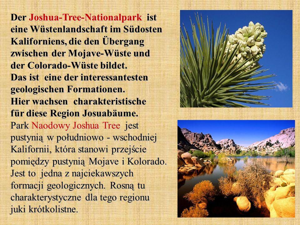 Der Joshua-Tree-Nationalpark ist eine Wüstenlandschaft im Südosten Kaliforniens, die den Übergang zwischen der Mojave-Wüste und der Colorado-Wüste bil