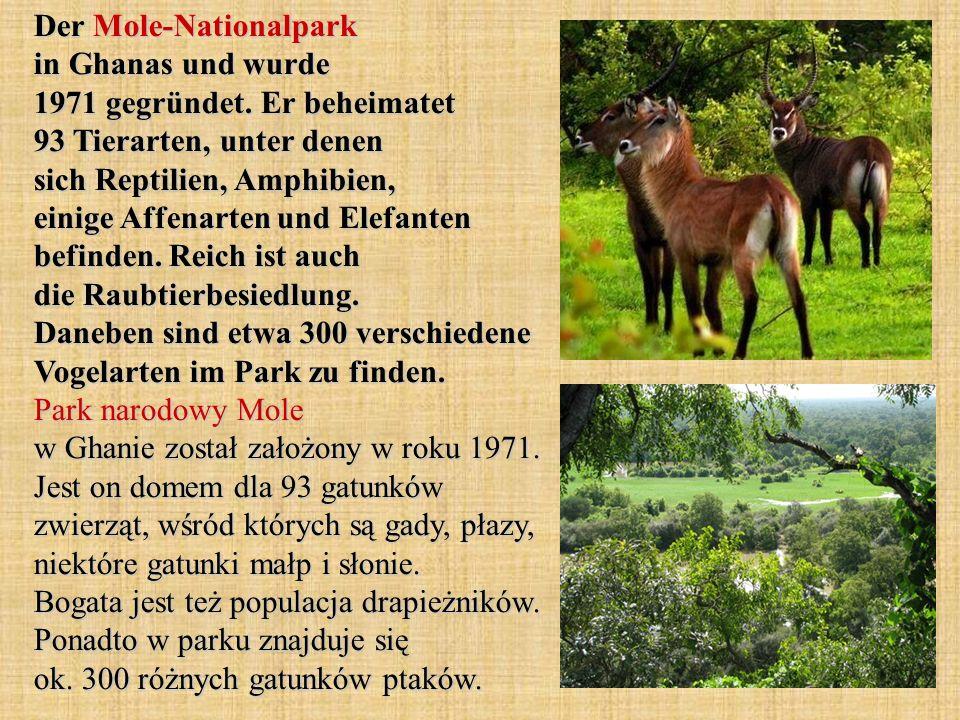 Der Mole-Nationalpark in Ghanas und wurde 1971 gegründet. Er beheimatet 93 Tierarten, unter denen sich Reptilien, Amphibien, einige Affenarten und Ele