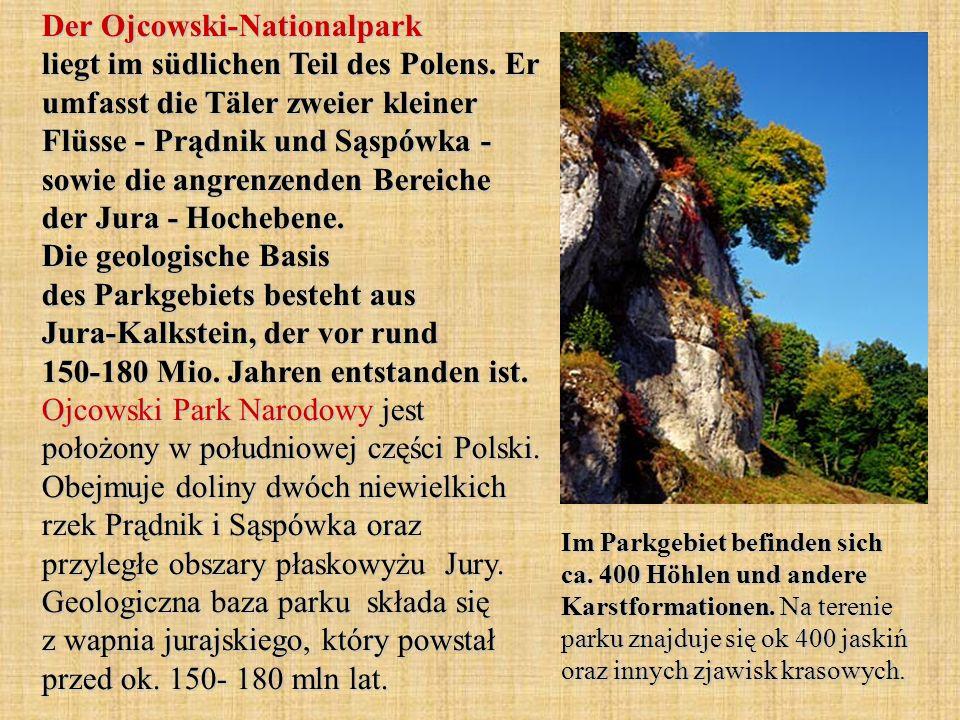 Der Ojcowski-Nationalpark liegt im südlichen Teil des Polens. Er umfasst die Täler zweier kleiner Flüsse - Prądnik und Sąspówka - sowie die angrenzend