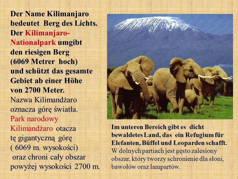 Der Name Kilimanjaro bedeutet Berg des Lichts. Der Kilimanjaro- Nationalpark umgibt den riesigen Berg (6069 Metrer hoch) und schützt das gesamte Gebie