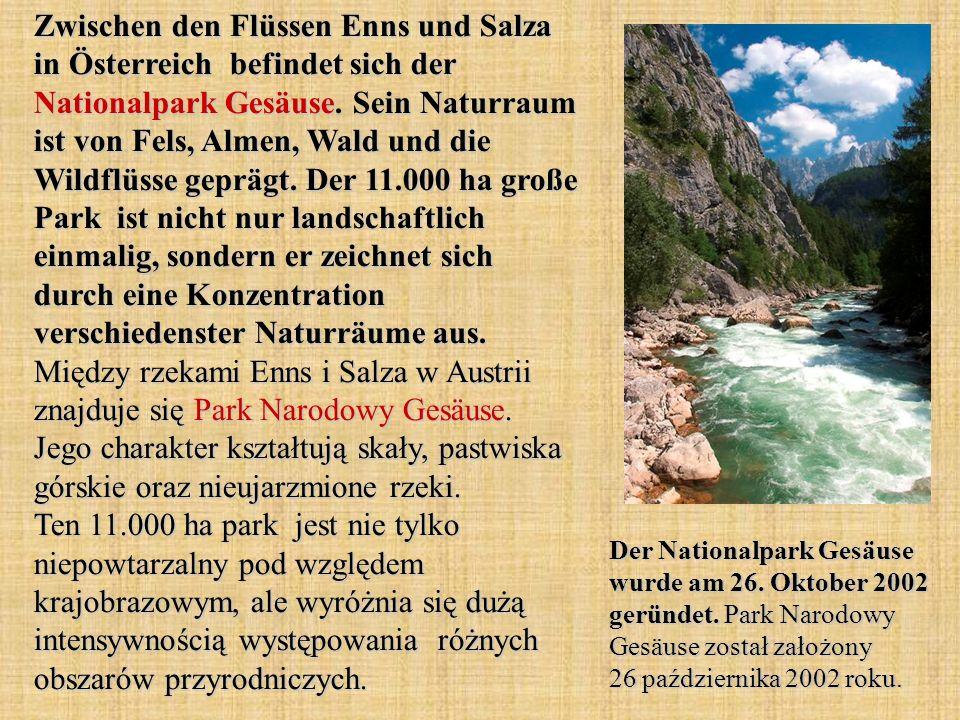 Zwischen den Flüssen Enns und Salza in Österreich befindet sich der Nationalpark Gesäuse. Sein Naturraum ist von Fels, Almen, Wald und die Wildflüsse