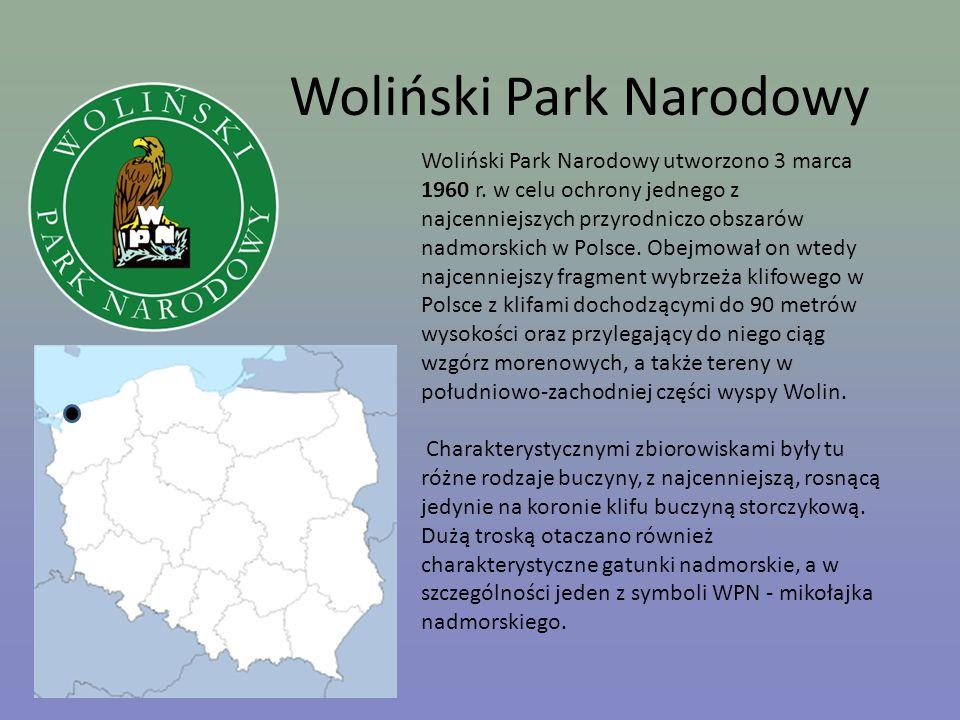 Woliński Park Narodowy Woliński Park Narodowy utworzono 3 marca 1960 r. w celu ochrony jednego z najcenniejszych przyrodniczo obszarów nadmorskich w P