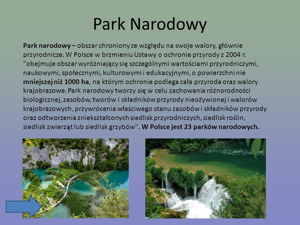 Park narodowy – obszar chroniony ze względu na swoje walory, głównie przyrodnicze. W Polsce w brzmieniu Ustawy o ochronie przyrody z 2004 r.