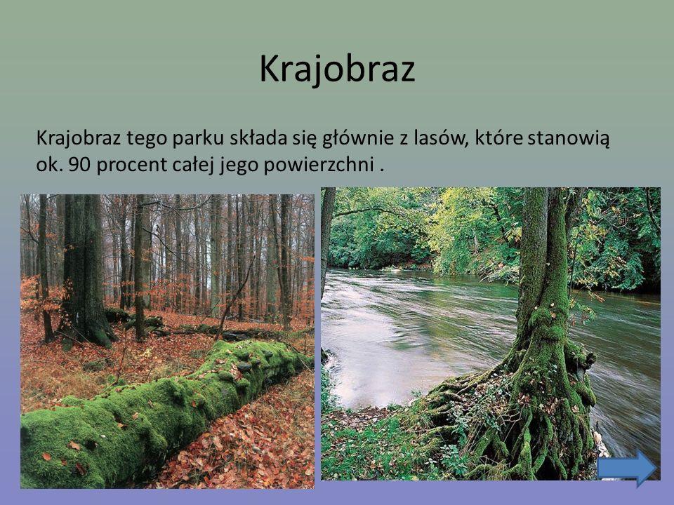 Krajobraz Krajobraz tego parku składa się głównie z lasów, które stanowią ok. 90 procent całej jego powierzchni.
