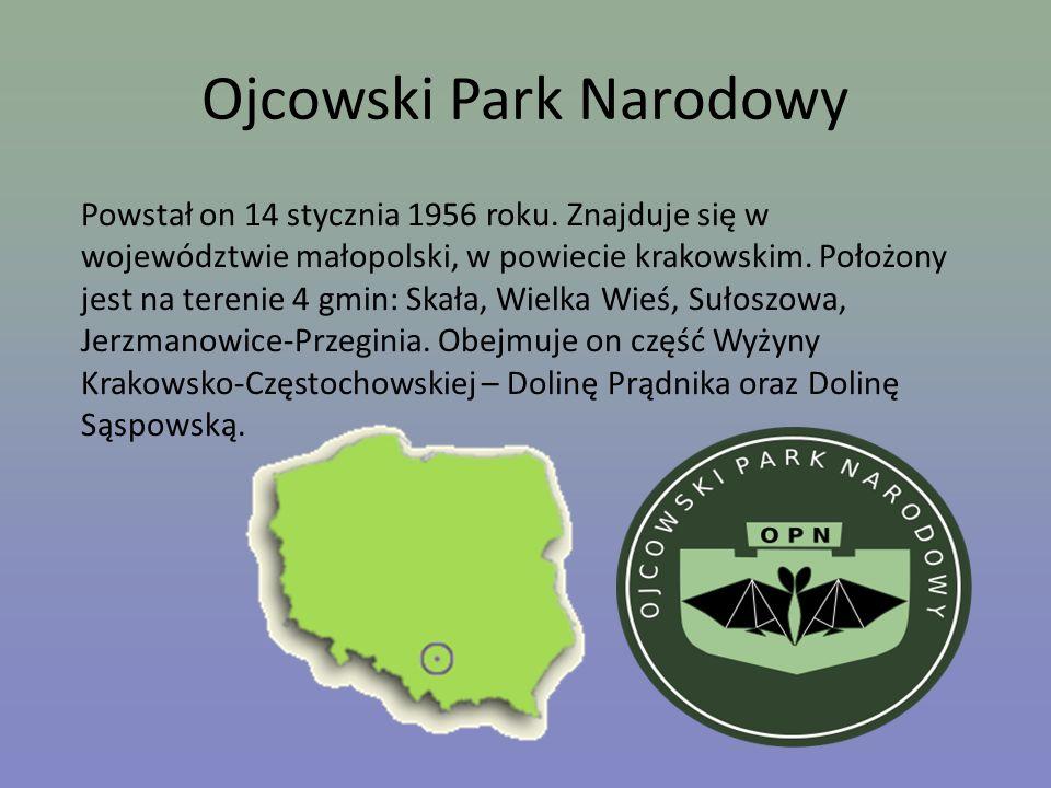 Ojcowski Park Narodowy Powstał on 14 stycznia 1956 roku. Znajduje się w województwie małopolski, w powiecie krakowskim. Położony jest na terenie 4 gmi