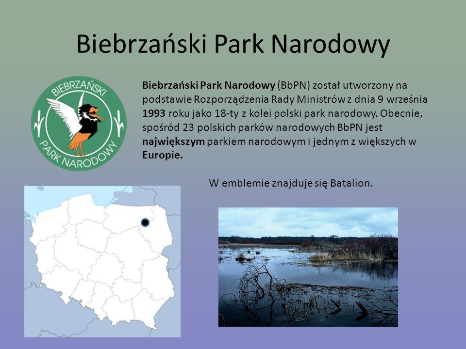 Biebrzański Park Narodowy Biebrzański Park Narodowy (BbPN) został utworzony na podstawie Rozporządzenia Rady Ministrów z dnia 9 września 1993 roku jak