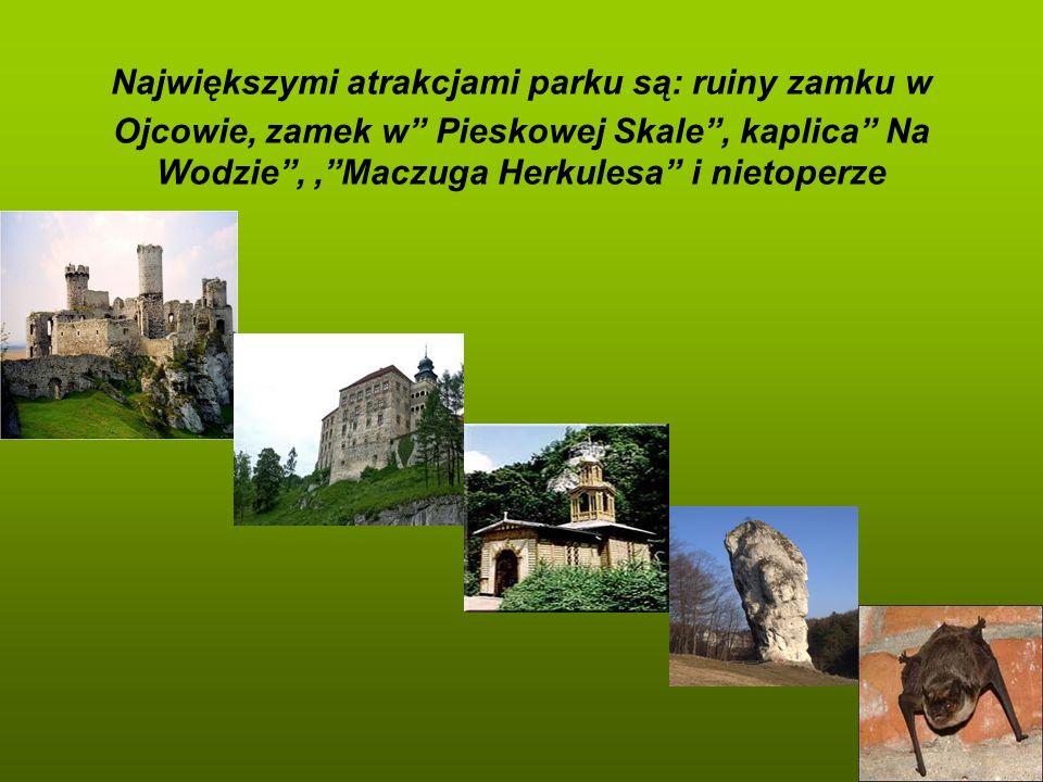 Największymi atrakcjami parku są: ruiny zamku w Ojcowie, zamek w Pieskowej Skale, kaplica Na Wodzie,,Maczuga Herkulesa i nietoperze