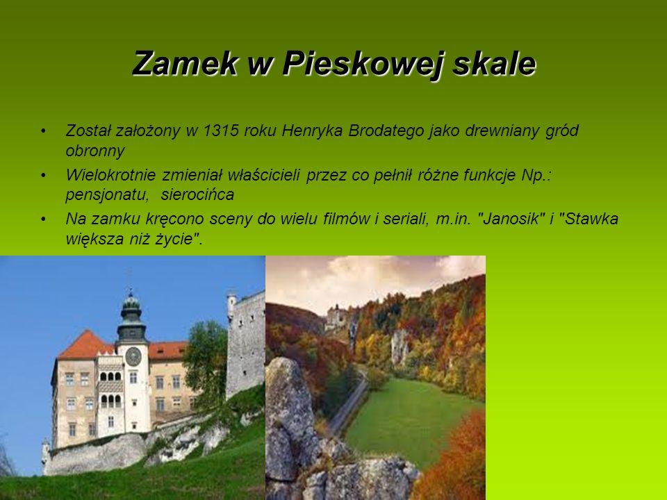 Zamek w Pieskowej skale Został założony w 1315 roku Henryka Brodatego jako drewniany gród obronny Wielokrotnie zmieniał właścicieli przez co pełnił ró