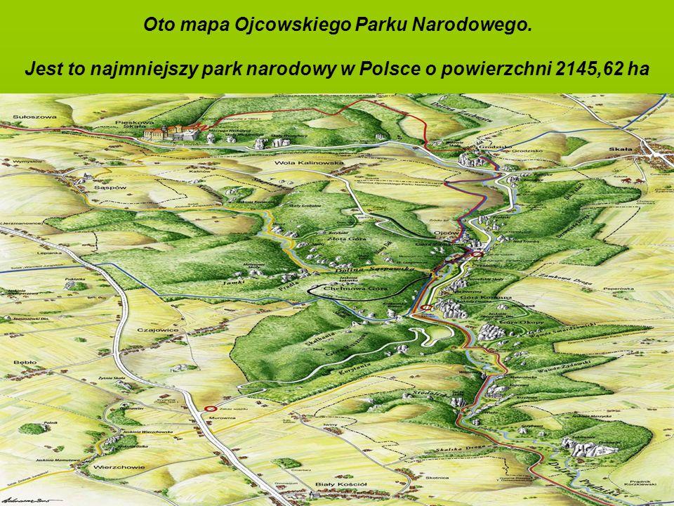 Oto mapa Ojcowskiego Parku Narodowego. Jest to najmniejszy park narodowy w Polsce o powierzchni 2145,62 ha