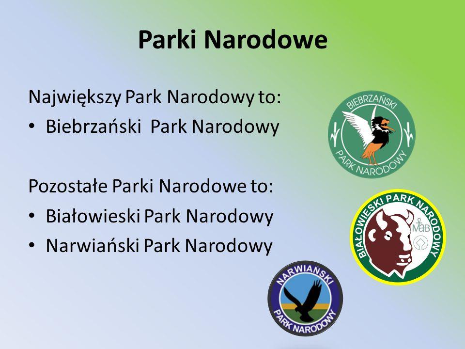 Parki Narodowe Największy Park Narodowy to: Biebrzański Park Narodowy Pozostałe Parki Narodowe to: Białowieski Park Narodowy Narwiański Park Narodowy