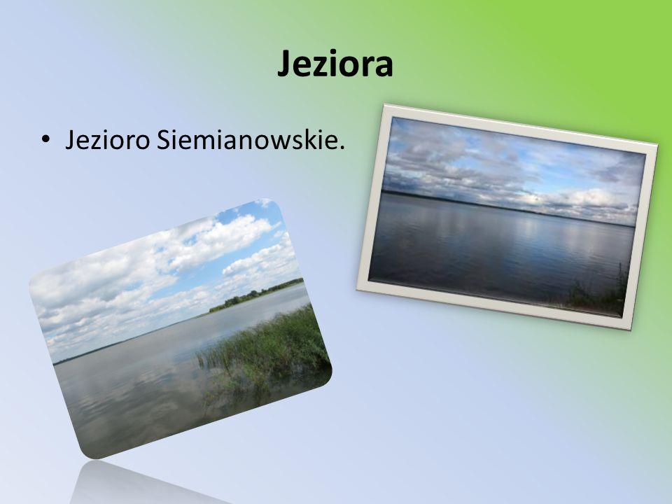 Jeziora Jezioro Siemianowskie.