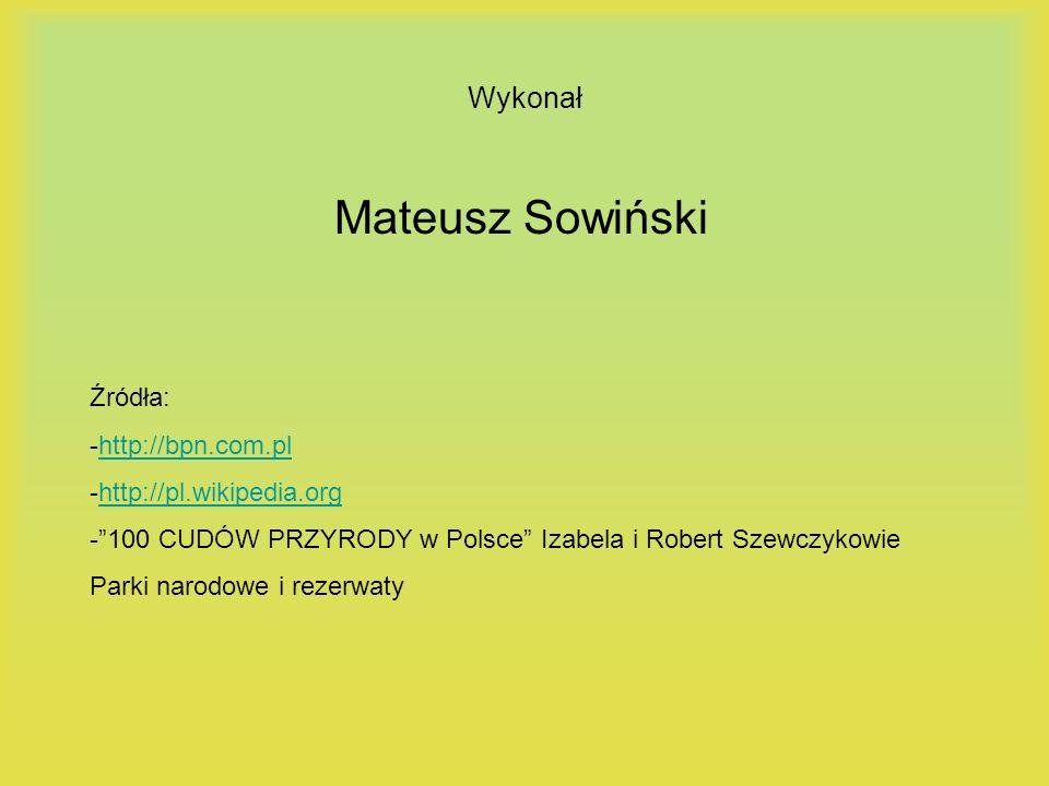 Wykonał Mateusz Sowiński Źródła: -http://bpn.com.plhttp://bpn.com.pl -http://pl.wikipedia.orghttp://pl.wikipedia.org -100 CUDÓW PRZYRODY w Polsce Izab