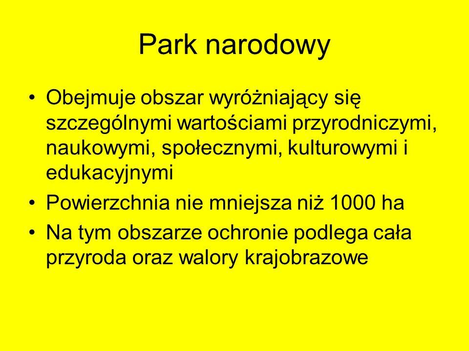 Park narodowy Obejmuje obszar wyróżniający się szczególnymi wartościami przyrodniczymi, naukowymi, społecznymi, kulturowymi i edukacyjnymi Powierzchni