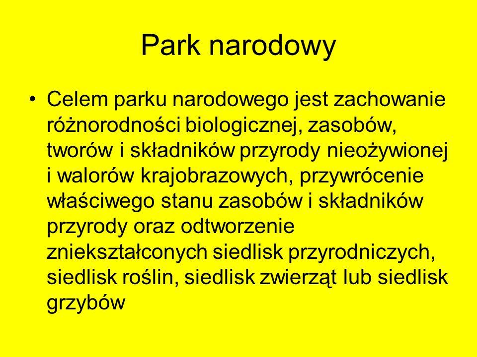 Park narodowy Celem parku narodowego jest zachowanie różnorodności biologicznej, zasobów, tworów i składników przyrody nieożywionej i walorów krajobra