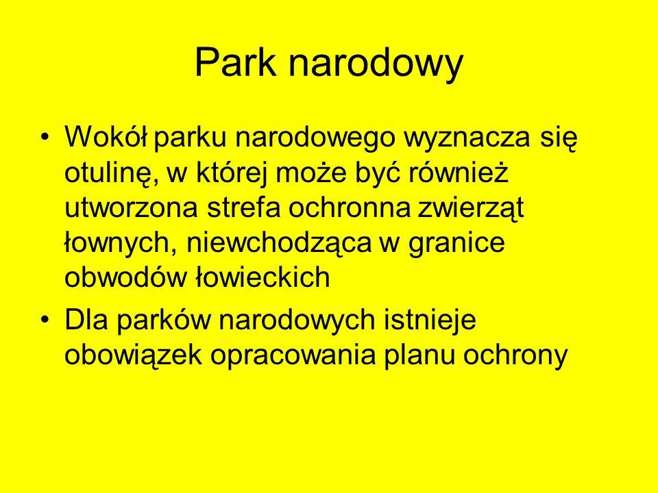 Park narodowy Wokół parku narodowego wyznacza się otulinę, w której może być również utworzona strefa ochronna zwierząt łownych, niewchodząca w granic