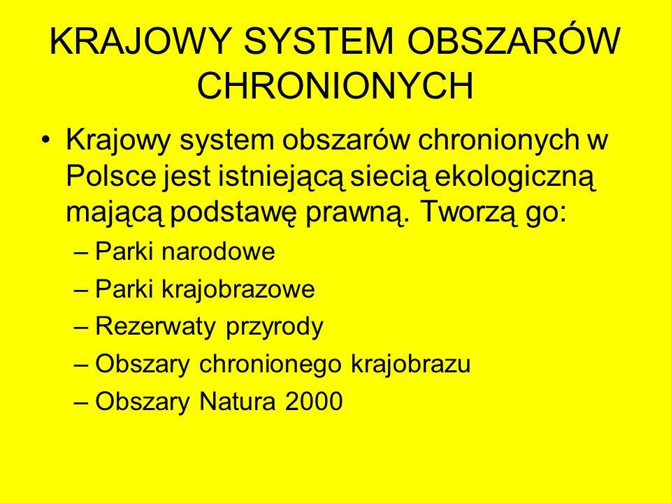 KRAJOWY SYSTEM OBSZARÓW CHRONIONYCH Krajowy system obszarów chronionych w Polsce jest istniejącą siecią ekologiczną mającą podstawę prawną. Tworzą go: