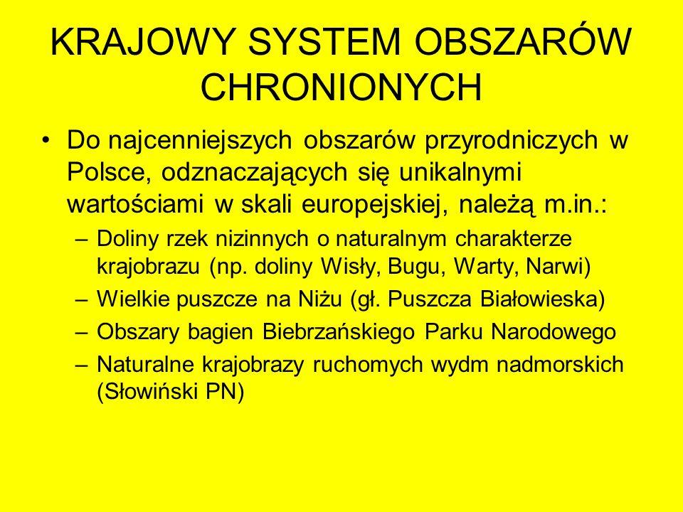 KRAJOWY SYSTEM OBSZARÓW CHRONIONYCH Do najcenniejszych obszarów przyrodniczych w Polsce, odznaczających się unikalnymi wartościami w skali europejskie