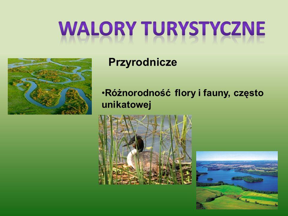OBIEKTY CHRONIONE : Występowanie czterech parków narodowych w obszarze północno-wschodniej Polski : 1.Białowieski Park Narodowy (wpisany na listę dzie
