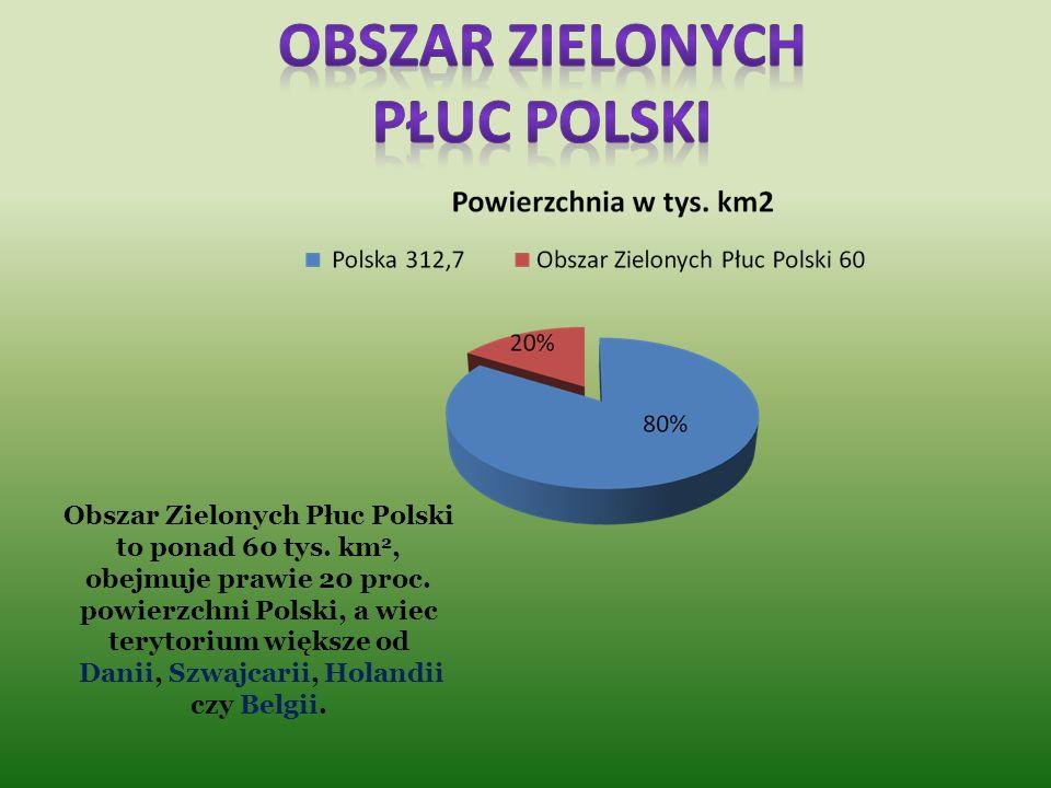 Zielone Płuca Polski to nazwa obszaru, który w planie przestrzennego zagospodarowania kraju został wyodrębniony ze względu na szczególne znaczenie dla
