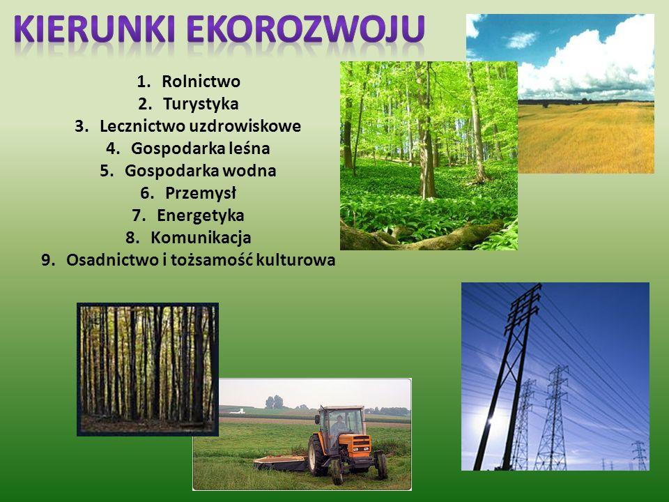 Ideą Zielonych Płuc Polski jest przede wszystkim artykułowanie potrzeby zrównoważonego rozwoju na tym obszarze.