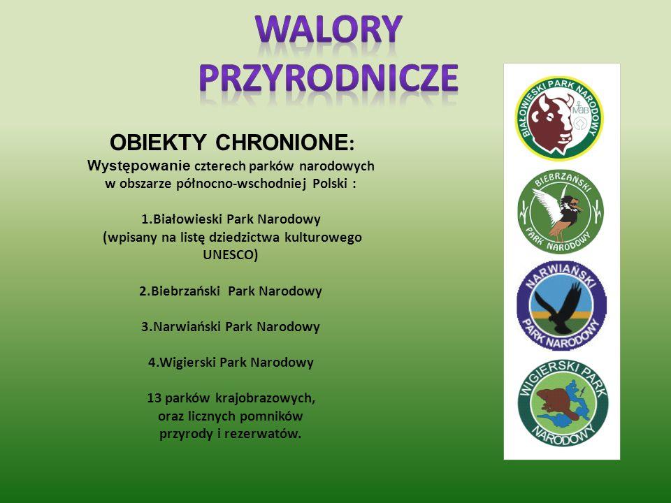 Promocja technologii towarów i usług nieszkodzących środowisku, np. upowszechnianie produktów pochodzących z obszaru Zielonych Płuc Polski Pozyskiwane