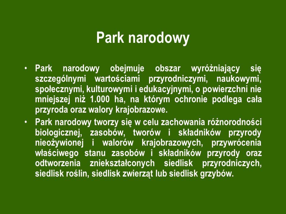 Park narodowy Park narodowy obejmuje obszar wyróżniający się szczególnymi wartościami przyrodniczymi, naukowymi, społecznymi, kulturowymi i edukacyjnymi, o powierzchni nie mniejszej niż 1.000 ha, na którym ochronie podlega cała przyroda oraz walory krajobrazowe.