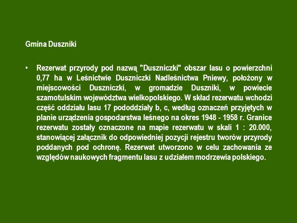 Gmina Duszniki Rezerwat przyrody pod nazwą Duszniczki obszar lasu o powierzchni 0,77 ha w Leśnictwie Duszniczki Nadleśnictwa Pniewy, położony w miejscowości Duszniczki, w gromadzie Duszniki, w powiecie szamotulskim województwa wielkopolskiego.